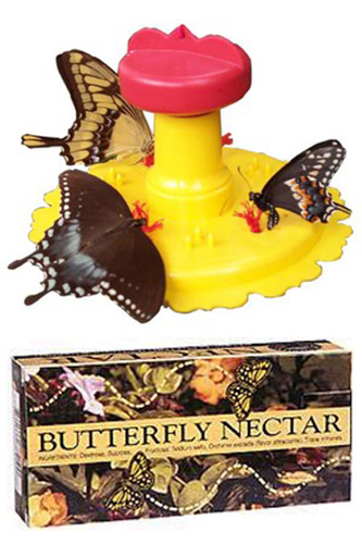 Butterfly Feeder with 1 Box Butterfly Food