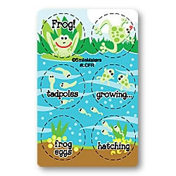 Frog Life Cycle Stickers