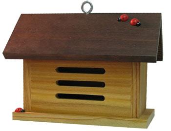'Ladybug Barn' Ladybug House