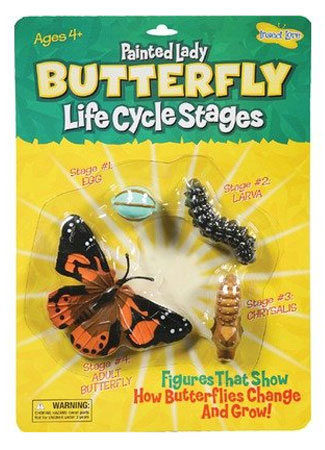 Butterfly Life Cycle Figurines