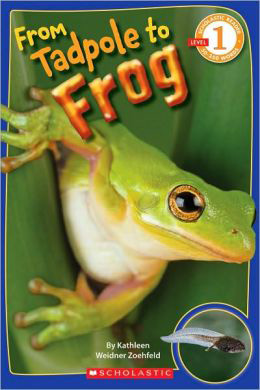 "Book: ""Tadpole to Frog"" by Scholastic"