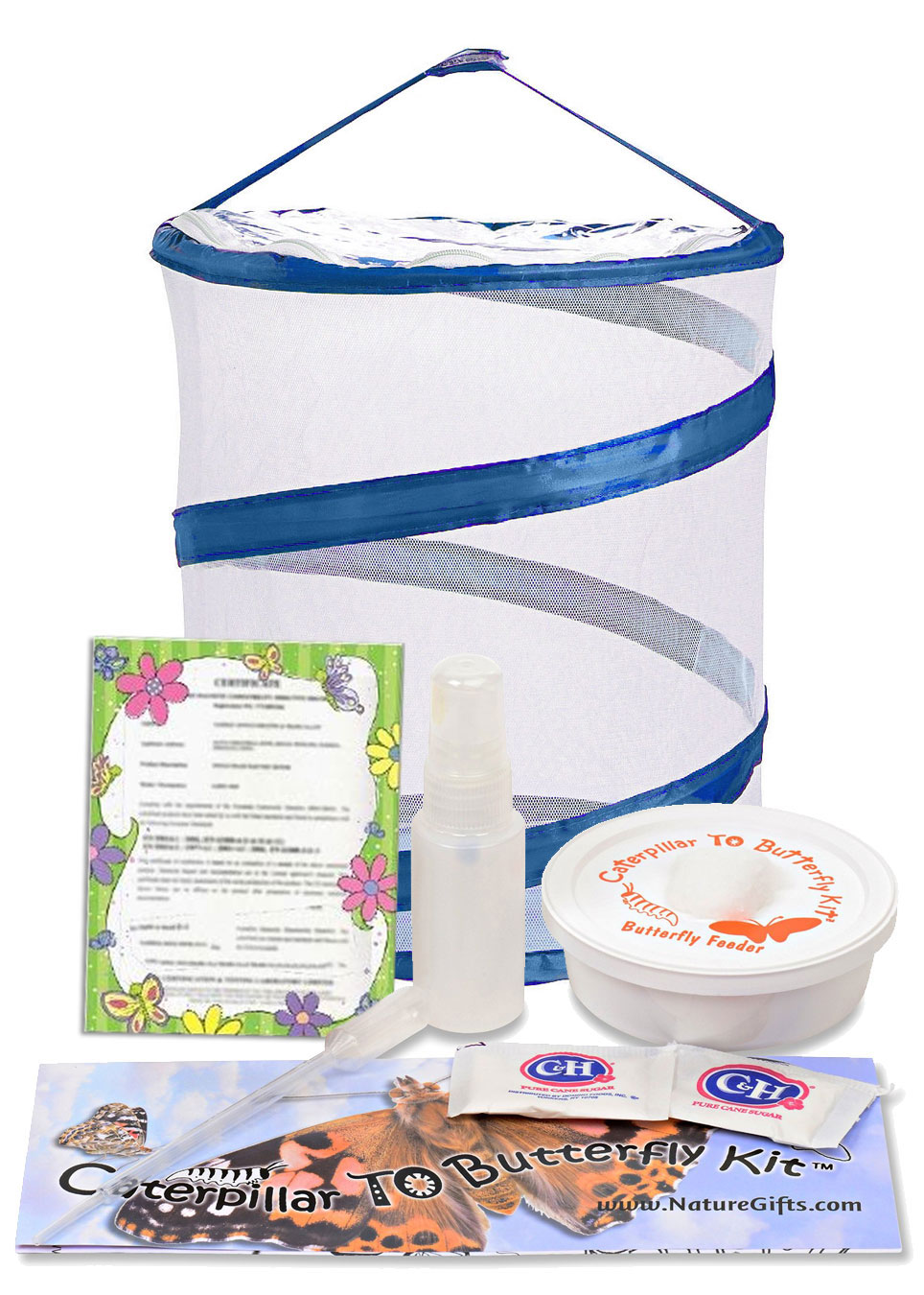 Butterfly Kit with CERTIFICATE for Caterpillars LATER