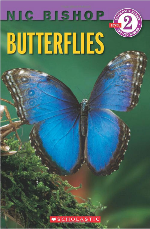 """Butterflies"" K-3rd Life Cycle Book"