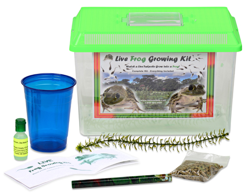 Grow a Frog Kit – Leopard frog