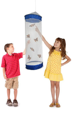 """School Size """"Butterfly Kit"""""""