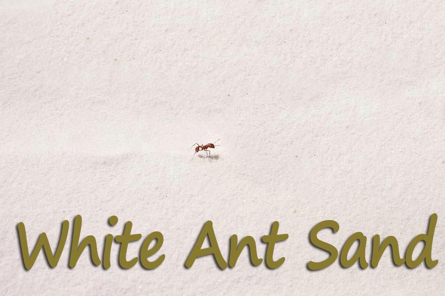 Ant Farm Sand Refill
