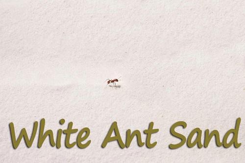 ant-farm-sand-refill-white