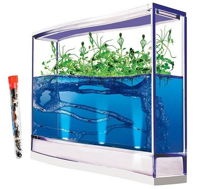 giant-lighted-ecosystem-ant-habitat-with-1-tube-of-ants-400×369 (1)