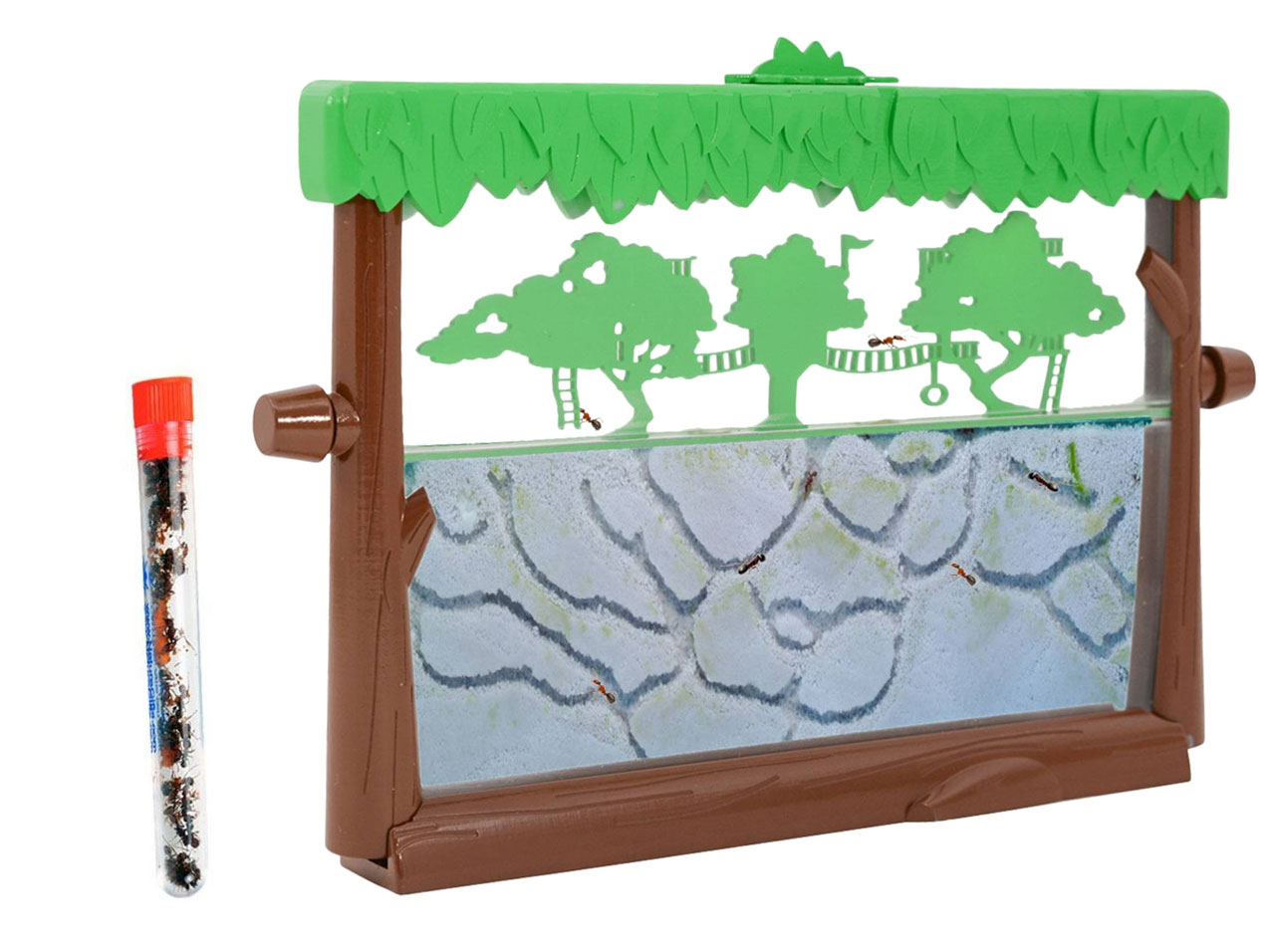 Tree House Ant Habitat Shipped with Live Ants