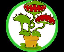 Live Bug Eating Plants