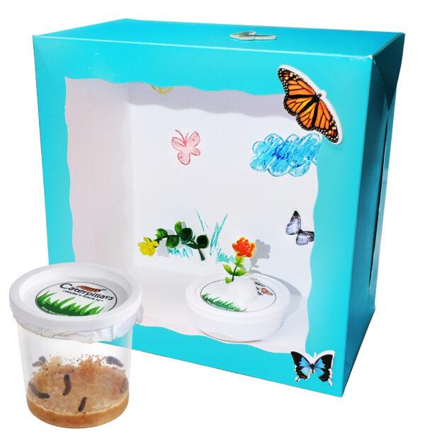 crafty-box-best-cup